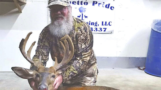 13-point buck